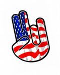 THE SHOCKER Hand With American Stars & Stripes US Flag Motif External Vinyl Car Sticker 115x80mm